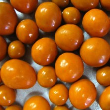 Milk & White Chocolate Apricots - 8oz