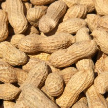 Peanuts - Salted in Shell - 10 oz.